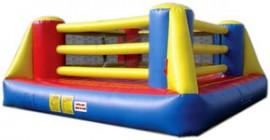 Big Bouncy Boxing