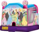 Disney Princesses New Extra Large 4 in 1 Wet/Dry Combo