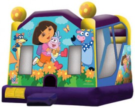 Dora the Explorer Extra Large Wet/Dry Combo