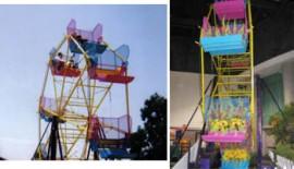 Ferris Wheel (25')