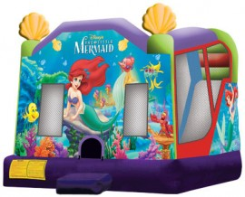 Little Mermaid Extra Large 4 in 1 Wet/Dry Combo