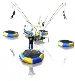 Monkey Motion Quad Pod / Euro Bungy