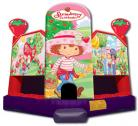 Strawberry Shortcake Extra Large Clubhouse Jumper