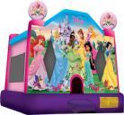 Disney Princesses Jumper (New)